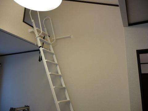 既存のはしご